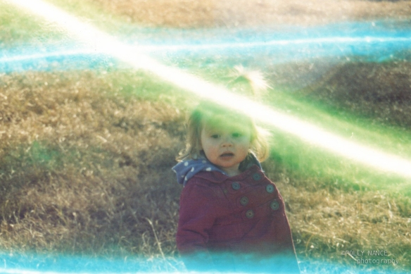 Curious Adeline. Film photograph. Polly Nance. 2012.